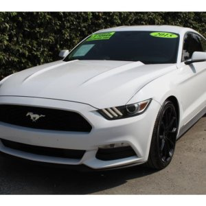 2015 Ford Mustang V6 Coupe 2D